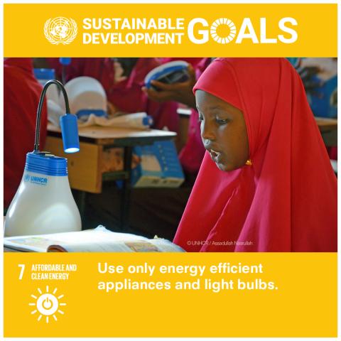 Goal 7 Energia pulita e accessibile