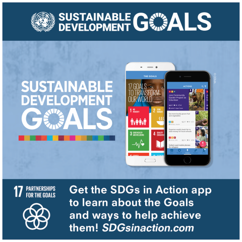 Goal 17 Partnership per gli obiettivi